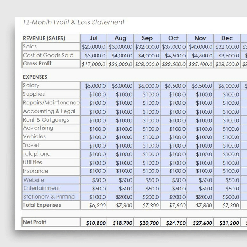 6 month profit and loss statement